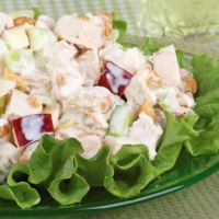 Turkey Salad with apples      2 C.  turkey, chunked     3 Granny Smith apples, cored and diced ,1 1/2 C. celery, chopped      1 C. parsley, chopped     1 C. dressing of your choice     1 C. toasted walnuts, chopped