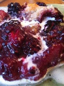 """Homemade Kentucky Blackberry Cobbler ..."""" a promising pan of happiness """" ... Recipe is filled with homebaked goodness!"""