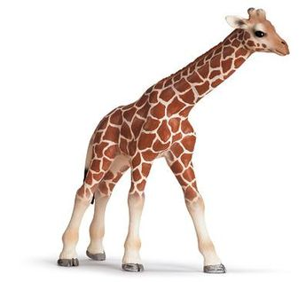 Amazon.com: Schleich Giraffe Calf: Toys & Games