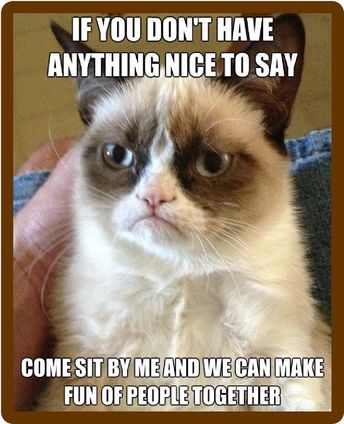 Details about Funny Grumpy Cat Nothing To Say Refrigerator Magnet