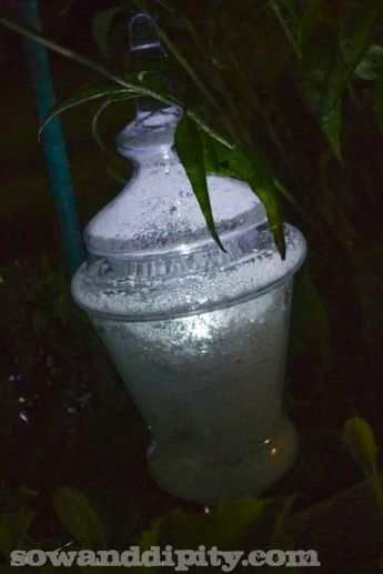 DIY Garden Lights -