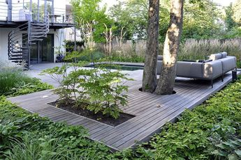 Mixed Woodland Plantation And Pathway In A Small Private Ga