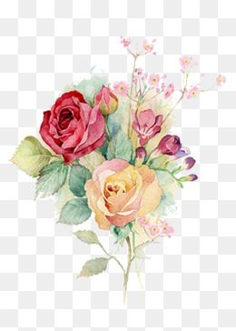 Watercolor Flowers, Watercolor Clipart, Hand Painted, Watercolor PNG Transparent Image and Clipart for Free Download