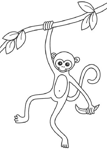 10 Mewarnai Gambar Monyet Bonikids