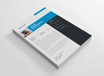 Venice Professional Resume Design Template - Graphic Templates