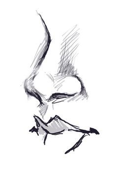 garyoldmanss-deactivated2014030 said: It's a front view nose, but a bit to the side Answer: In this case: One of my art teachers suggested using circles to construct the tip/nostrils of the nose. I...