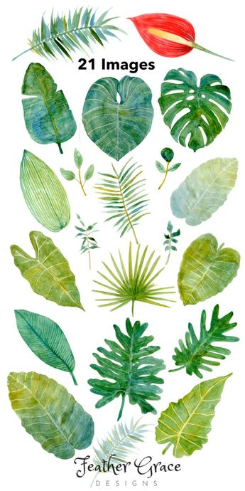 Tropical Leaves Clipart, Tropical Watercolor Leaves, Bright Green Foliage, Monstera, Palm tree, Jung