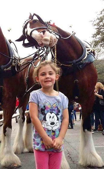 Cette Petite Fille Pose Avec un Cheval — Et Quand Son Père Regarde la Photo, Il Éclate de Rire !