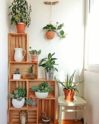 6 maneras de decorar tu cocina con plantas