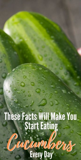 These Facts Will Make You Start Eating Cucumbers Every Day!