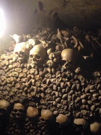 Die Katakomben von Paris (Les Catacombs), Paris: 5.136 Bewertungen und 3.906 Fotos von Reisenden. Die Katakomben von Paris (Les Catacombs) ist auf Platz 57 von 1.105 Paris Aktvititäten bei TripAdvisor.