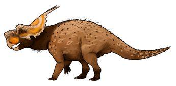 Achelousaurus horneri | A Dinosaur A Day
