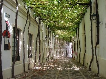 Most Enchanting Side Streets Around the World