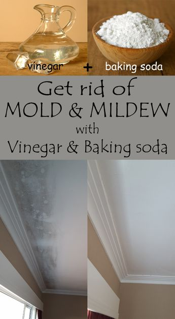 Get rid of mold and mildew with vinegar and baking soda