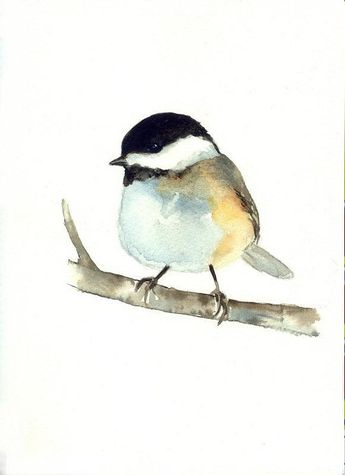 Chickadee Bird ORIGINAL Watercolor Painting Little Gray Bird Illustration Animal Nursery Art Hand Painted 5x7