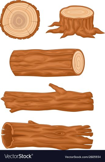 Cartoon Wooden log collection vector image on