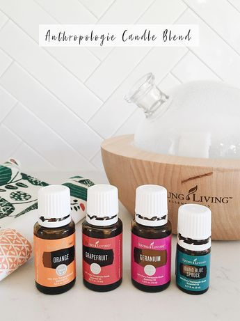 Anthropologie volcano candle diffuser Blend | In Honor Of Design