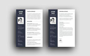 PSD Elegant Professional Resume Template - Graphic Templates