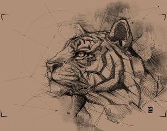 #tiger #sketch