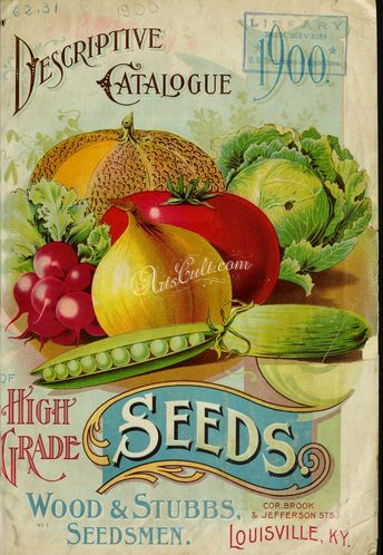 seeds_catalogs-03617 058-Onion, Musk melon, Cabbage, Cucumber, Radish, Pea  botanical floral botany natural naturalist nature flowers flower beautiful nice flora plants blooming ArtsCult.com Artscult ArtsCult vintage printable public domain 300 dpi commercial use 1800s 1700s 1900s Victorian Edwardian art clipart royalty free digital download picture collection pack paintings scan high qulity illustration old books pages suppl