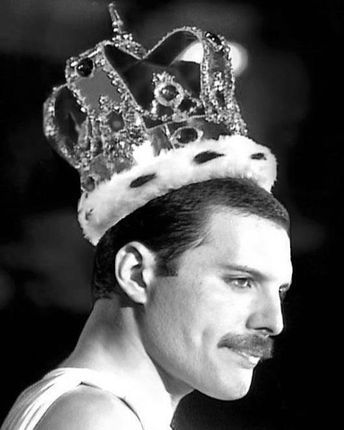"""Freddie Mercury/Queen Fanpage on Instagram: """"Almost to 19K! Thank you all! 😘😭🙏 ———————————————————————— Please follow me for more Freddie Mercury/Queen content:…"""""""