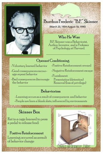 Behaviourist approach, operant conditioning and Skinner.