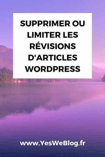 Comment Supprimer ou Limiter les Révisions d'articles WordPress ? - Yes We Blog !