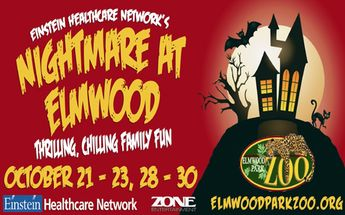 Halloween fun at the elmwood park zoo in norristown.