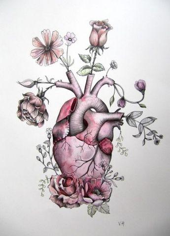 41 Ideas Tattoo Heart Anatomical Ideas Illustrations #tattoo