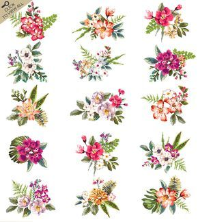 Hand-drawn flower collection Vol.2 by Graphic Box on @creativemarket