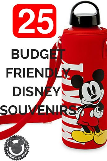 25 Budget Friendly Disney Souvenirs