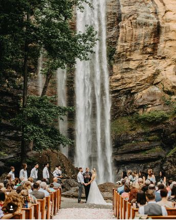Já imaginou se casar numa paisagem dessas?! 🌳💓 O que acharia da ideia?