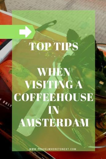 The best coffeehouse in Amsterdam: Dampkring
