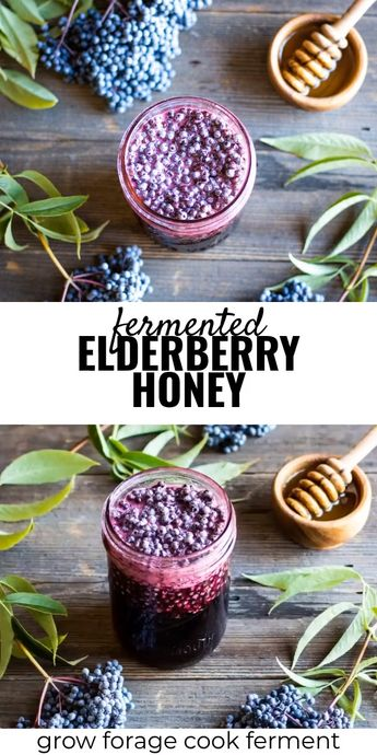 Fermented Elderberry Honey Recipe
