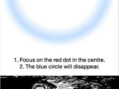 Illusions, Cool/Weird stuff