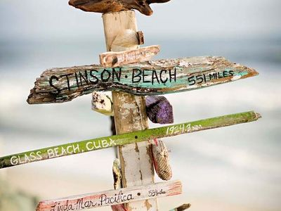 Beach DIY Decor On Pinterest Beach Cottages Seahorses And Shells