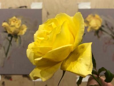 Flower Art, Original Paintings
