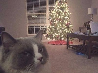 9GAG Christmas