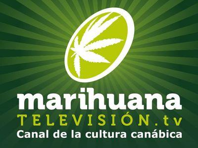 Marihuana Televisión (marihuanatv) en Pinterest