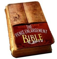 Free ebook download bible pe