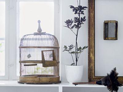Alessia Tessari (petitefillealex) su Pinterest
