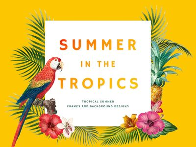 illustration : Hello Summer