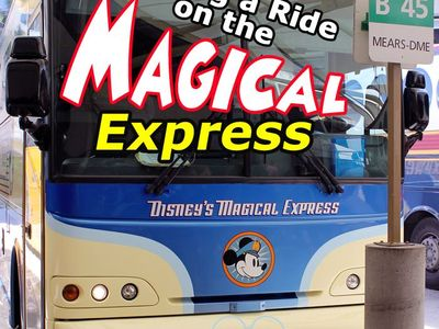Disney World - Transportation