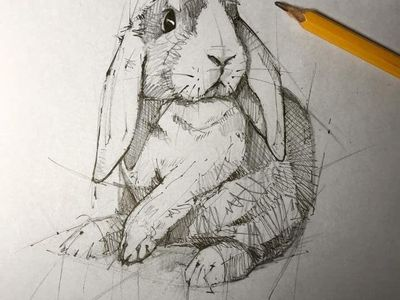 Art inspiration drawing