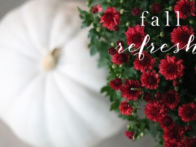 :: Fall Entertaining & Recipes