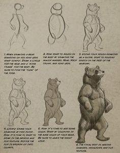 Animals sketching