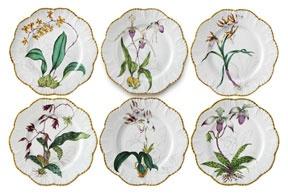 Botanical China