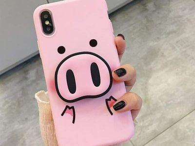 Pig cases