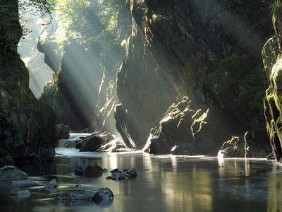 Wonders of sunlight