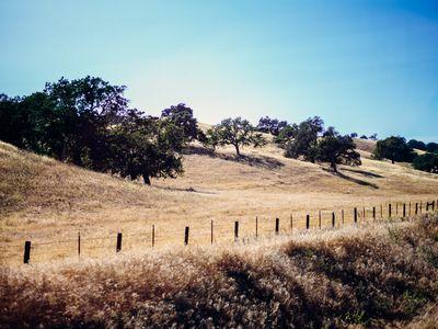 Santa Barbara + Santa Ynez Valley